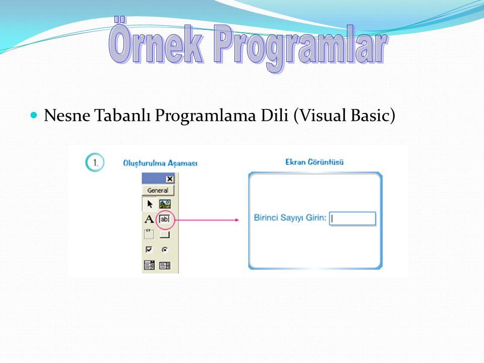 Nesne Tabanlı Programlama Dili (Visual Basic)