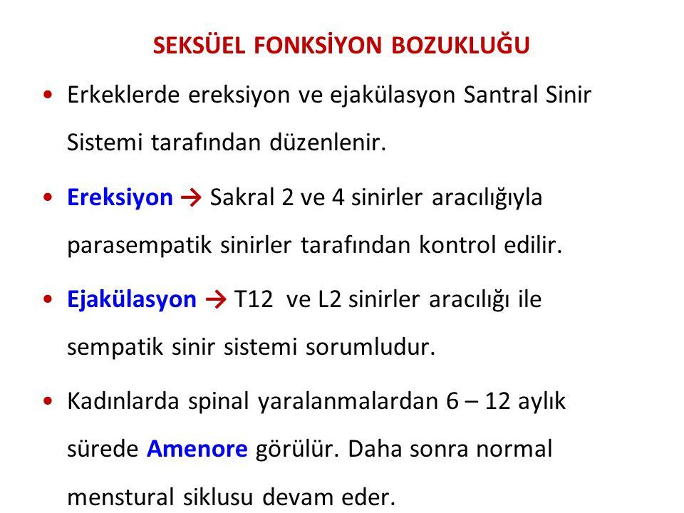 SEKSÜEL FONKSİYON BOZUKLUĞU Erkeklerde ereksiyon ve ejakülasyon Santral Sinir Sistemi tarafından düzenlenir. Ereksiyon → Sakral 2 ve 4 sinirler aracıl
