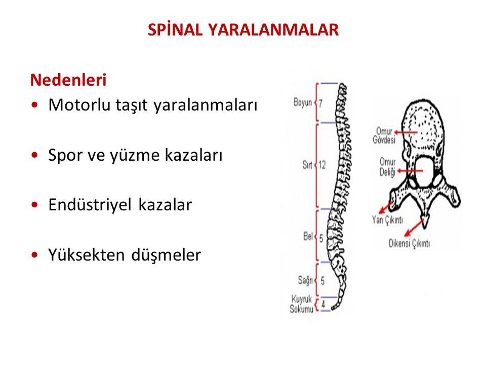 SPİNAL YARALANMALAR Nedenleri Motorlu taşıt yaralanmaları Spor ve yüzme kazaları Endüstriyel kazalar Yüksekten düşmeler