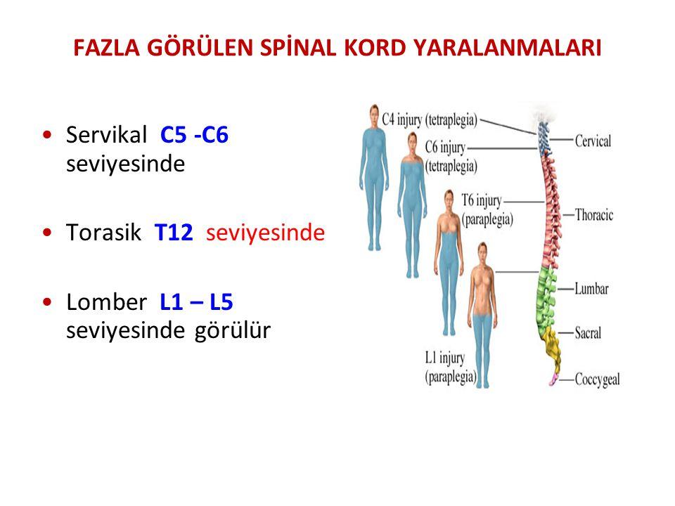FAZLA GÖRÜLEN SPİNAL KORD YARALANMALARI Servikal C5 -C6 seviyesinde Torasik T12 seviyesinde Lomber L1 – L5 seviyesinde görülür