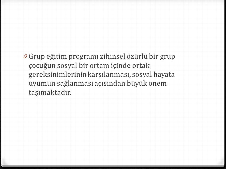 0 Grup eğitim programı zihinsel özürlü bir grup çocuğun sosyal bir ortam içinde ortak gereksinimlerinin karşılanması, sosyal hayata uyumun sağlanması açısından büyük önem taşımaktadır.