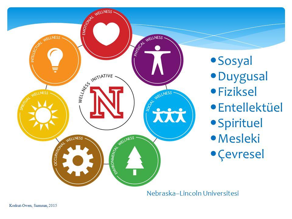 Korkut-Owen, Samsun, 2015 20 Nebraska–Lincoln Universitesi Sosyal Duygusal Fiziksel Entellektüel Spirituel Mesleki Çevresel