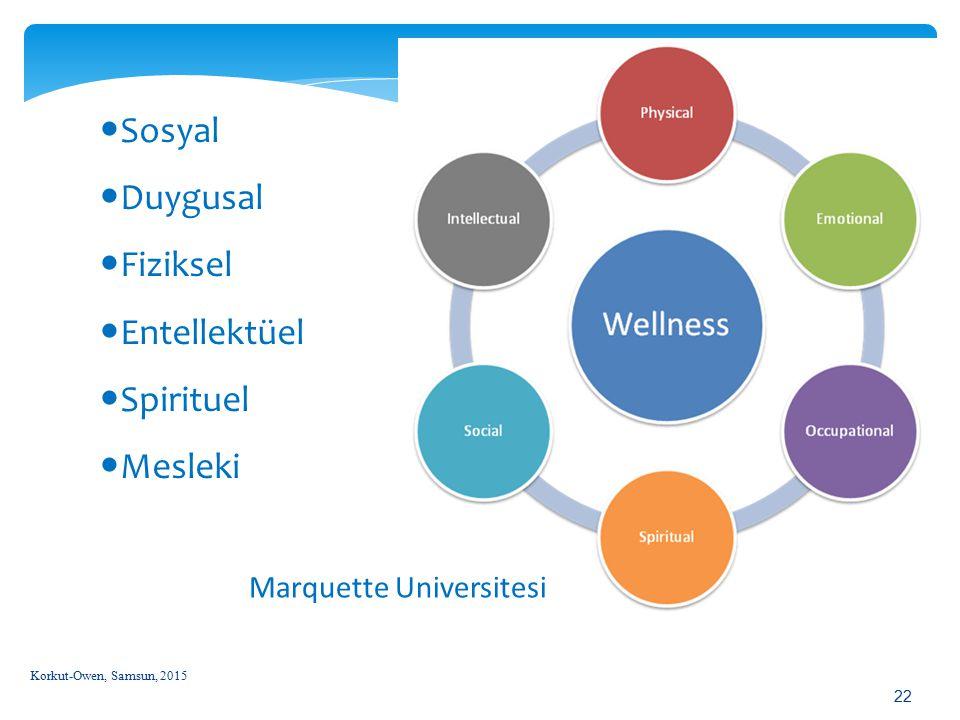 Korkut-Owen, Samsun, 2015 22 Marquette Universitesi Sosyal Duygusal Fiziksel Entellektüel Spirituel Mesleki