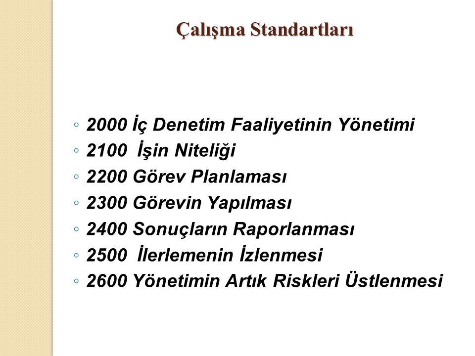 ◦ 2000 İç Denetim Faaliyetinin Yönetimi ◦ 2100 İşin Niteliği ◦ 2200 Görev Planlaması ◦ 2300 Görevin Yapılması ◦ 2400 Sonuçların Raporlanması ◦ 2500 İl