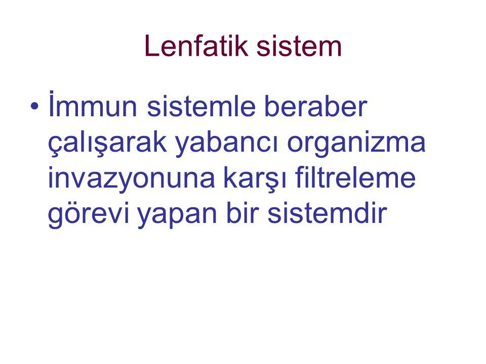 Lenfatik sistem İmmun sistemle beraber çalışarak yabancı organizma invazyonuna karşı filtreleme görevi yapan bir sistemdir