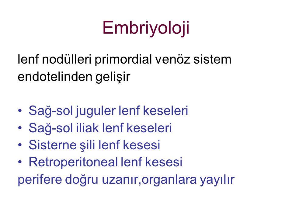 Embriyoloji lenf nodülleri primordial venöz sistem endotelinden gelişir Sağ-sol juguler lenf keseleri Sağ-sol iliak lenf keseleri Sisterne şili lenf k