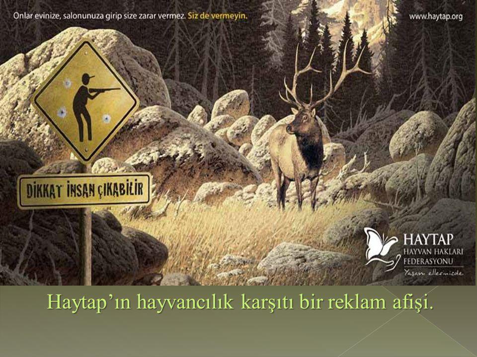 Haytap'ın hayvancılık karşıtı bir reklam afişi.