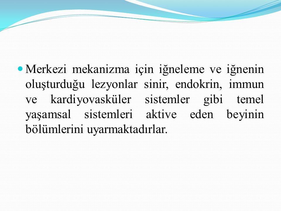 İstanbul Akupunktur Derneği ioztekin@hotmail.com