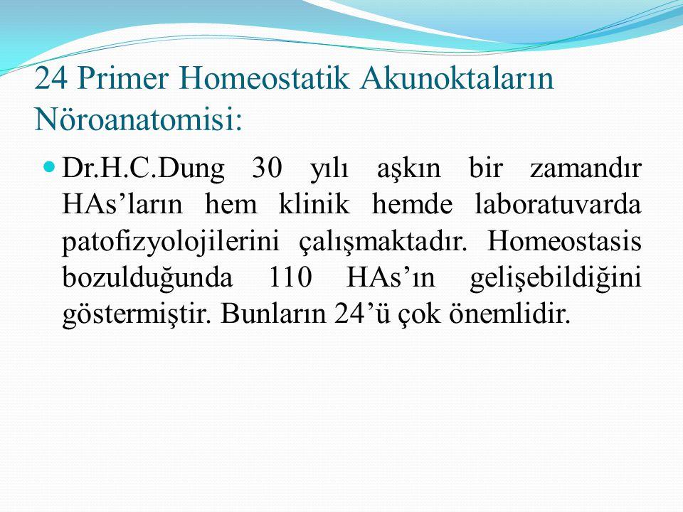 24 Primer Homeostatik Akunoktaların Nöroanatomisi: Dr.H.C.Dung 30 yılı aşkın bir zamandır HAs'ların hem klinik hemde laboratuvarda patofizyolojilerini