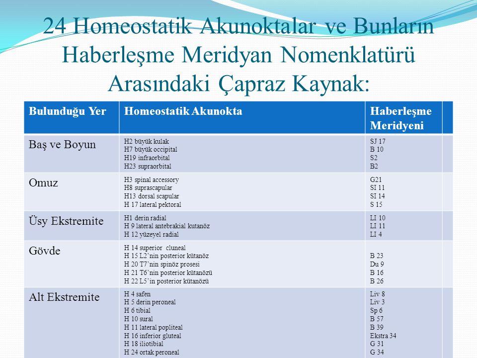 24 Homeostatik Akunoktalar ve Bunların Haberleşme Meridyan Nomenklatürü Arasındaki Çapraz Kaynak: Bulunduğu YerHomeostatik AkunoktaHaberleşme Meridyen