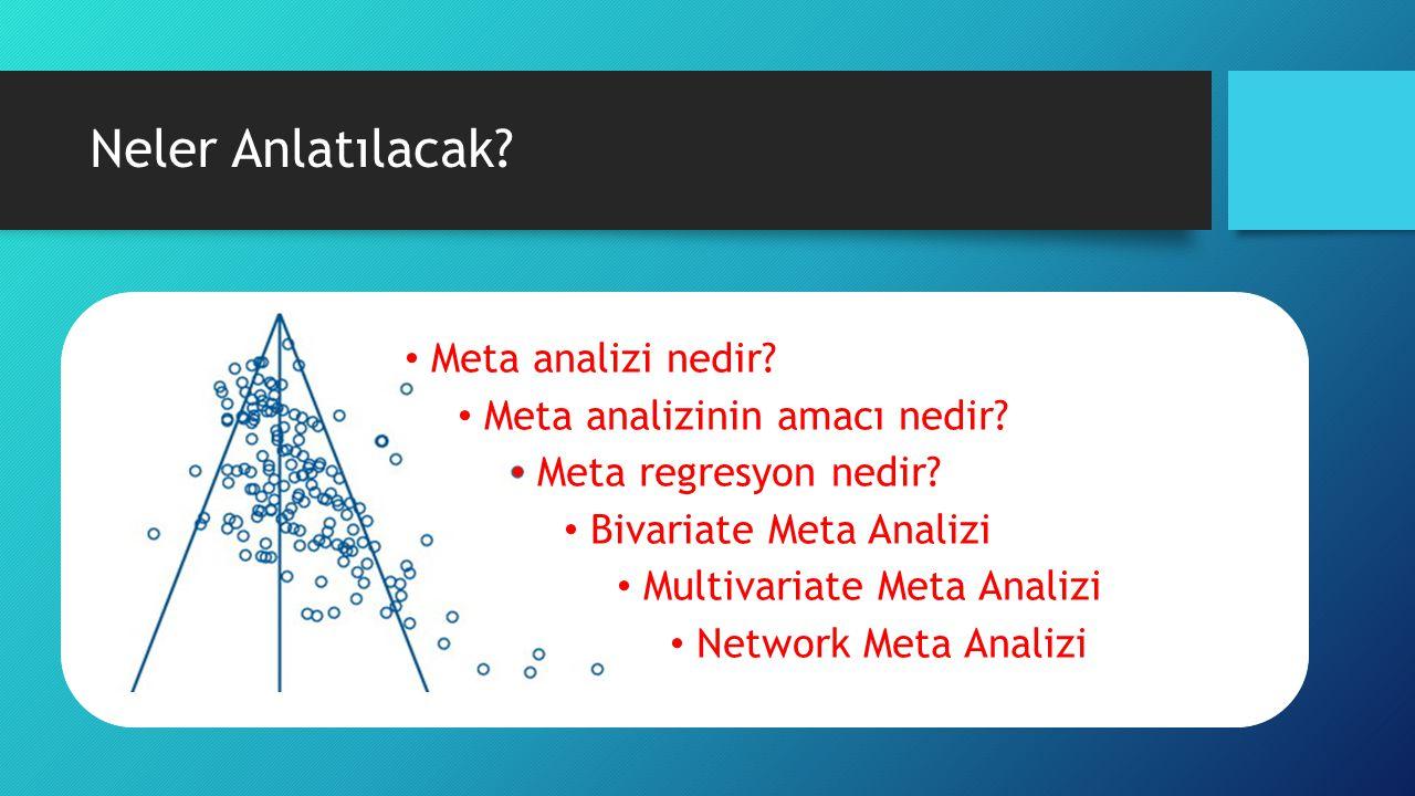 Meta Analizi Nedir.