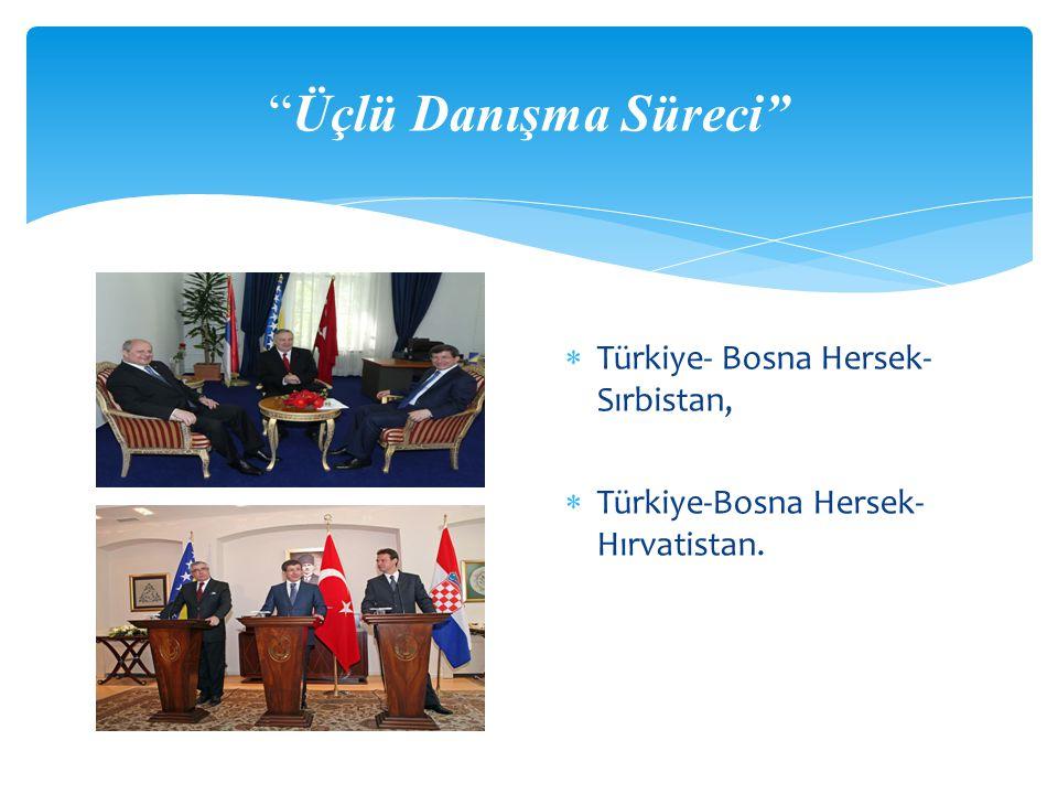  Ankara, Bosna-Hersek'in toprak bütünlüğünün muhafazasına ilaveten güvenlik ve de istikrar içinde hayatını sürdürebilmesi için bu ülkenin NATO ve Avrupa Birliği gibi uluslararası yapılarla bütünleşebilmesine yönelik büyük çaba harcamıştır.