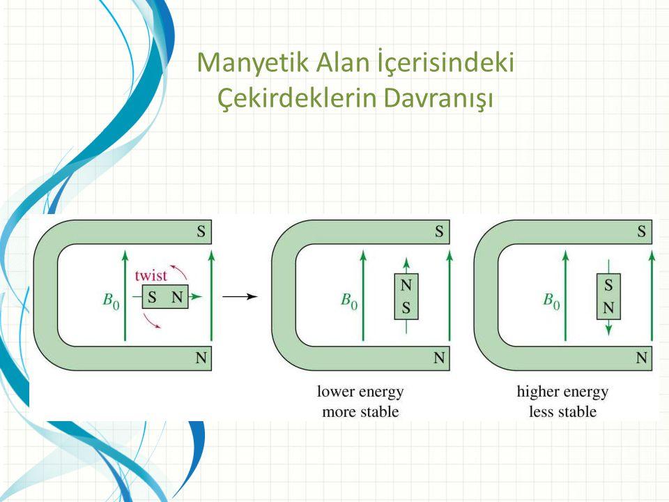Manyetik Alan İçerisindeki Çekirdeklerin Davranışı