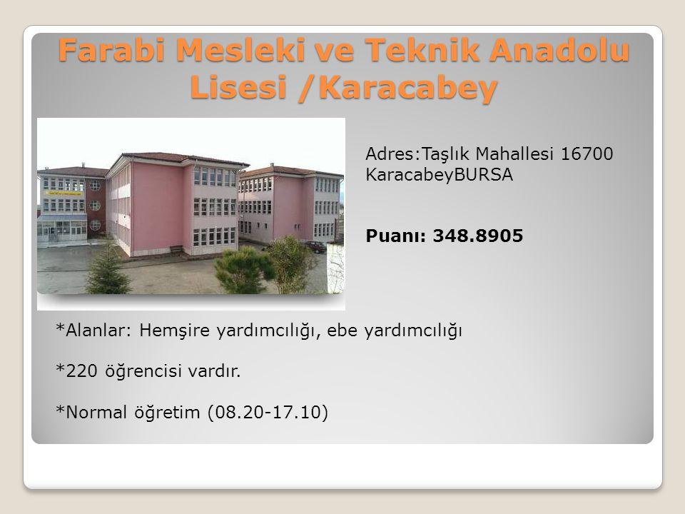 Farabi Mesleki ve Teknik Anadolu Lisesi /Karacabey Adres:Taşlık Mahallesi 16700 KaracabeyBURSA Puanı: 348.8905 *Alanlar: Hemşire yardımcılığı, ebe yar