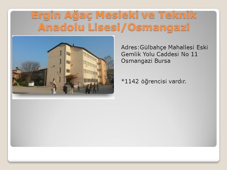 Ergin Ağaç Mesleki ve Teknik Anadolu Lisesi/Osmangazi Adres:Gülbahçe Mahallesi Eski Gemlik Yolu Caddesi No 11 Osmangazi Bursa *1142 öğrencisi vardır.