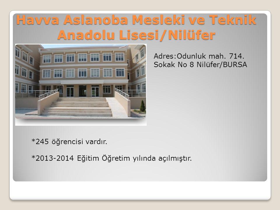 Havva Aslanoba Mesleki ve Teknik Anadolu Lisesi/Nilüfer Adres:Odunluk mah. 714. Sokak No 8 Nilüfer/BURSA *245 öğrencisi vardır. *2013-2014 Eğitim Öğre