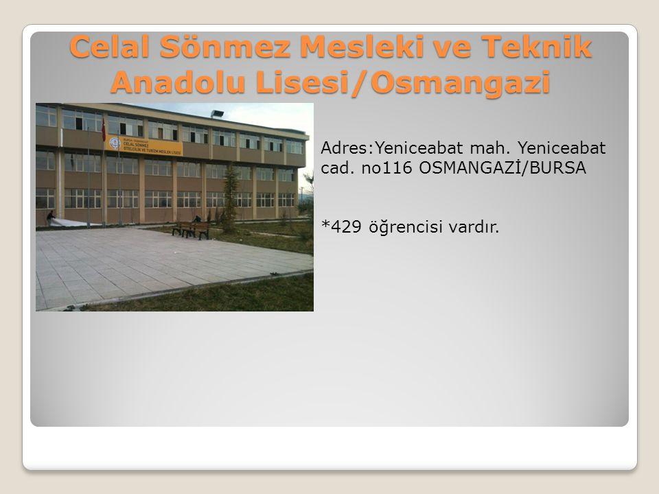 Celal Sönmez Mesleki ve Teknik Anadolu Lisesi/Osmangazi Adres:Yeniceabat mah. Yeniceabat cad. no116 OSMANGAZİ/BURSA *429 öğrencisi vardır.