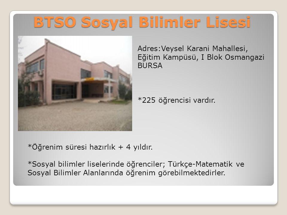 Hasan Ali Yücel Anadolu Lisesi/Osmangazi Adres:Dikkaldırım mh.