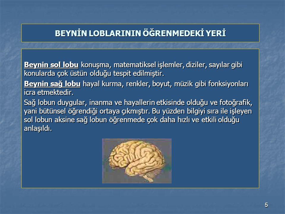5 Beynin sol lobu konuşma, matematiksel işlemler, diziler, sayılar gibi konularda çok üstün olduğu tespit edilmiştir.