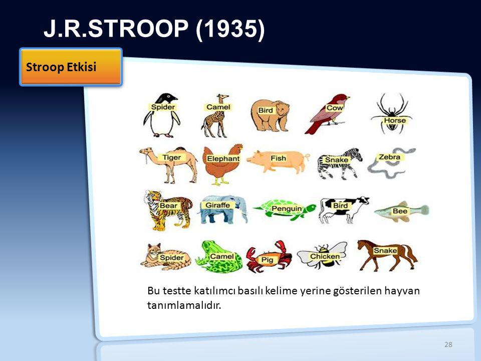 J.R.STROOP (1935) Stroop Etkisi 28 Bu testte katılımcı basılı kelime yerine gösterilen hayvan tanımlamalıdır.