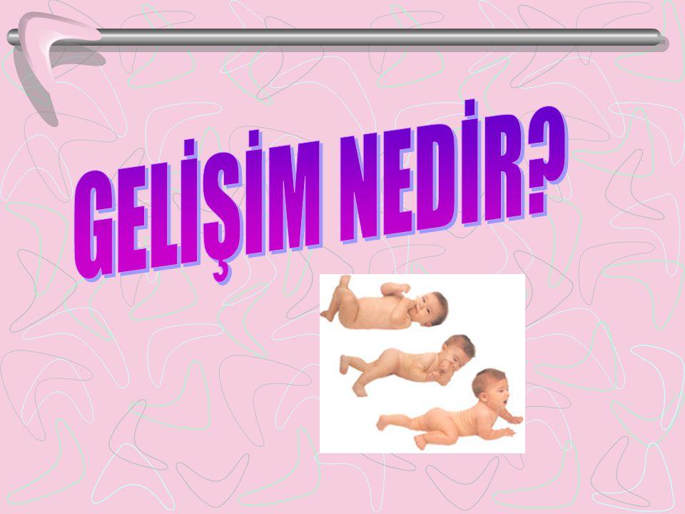 Uzman Rehber Öğretmen Süleyman Özkaya