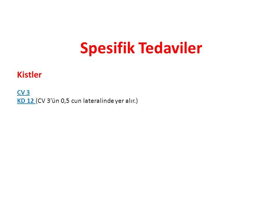 Spesifik Tedaviler Kistler CV 3 KD 12 (CV 3'ün 0,5 cun lateralinde yer alır.)