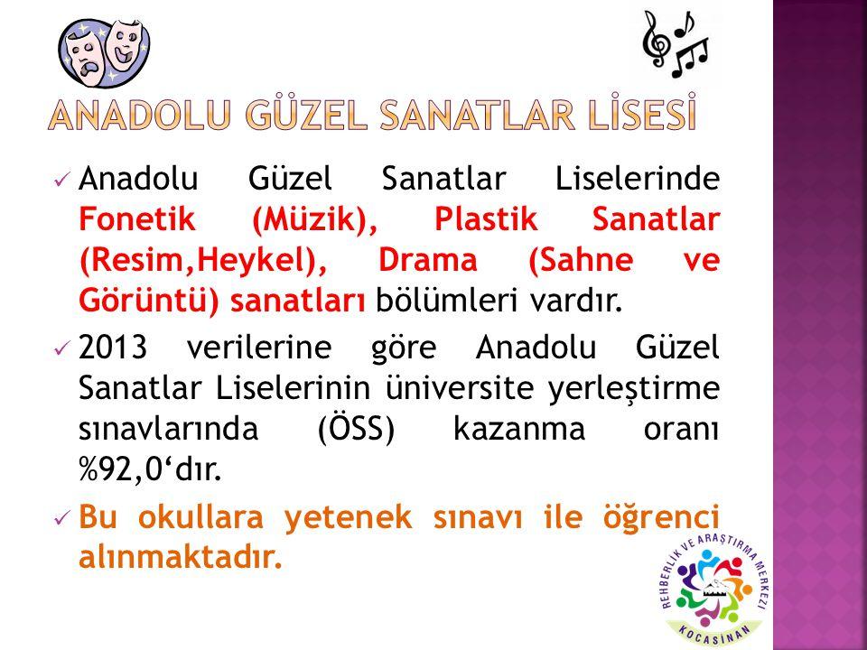 Anadolu Güzel Sanatlar Liselerinde Fonetik (Müzik), Plastik Sanatlar (Resim,Heykel), Drama (Sahne ve Görüntü) sanatları bölümleri vardır. 2013 veriler