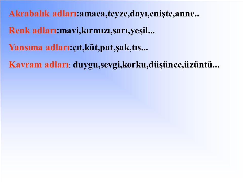 Kurum ve kuruluş adları : Çukurova Üniversitesi, Sabancı Holding... Kitap, gazete ve dergi adları : Kiralık Konak, Yaban, Çalıkuşu, Hürriyet, Sabah, T