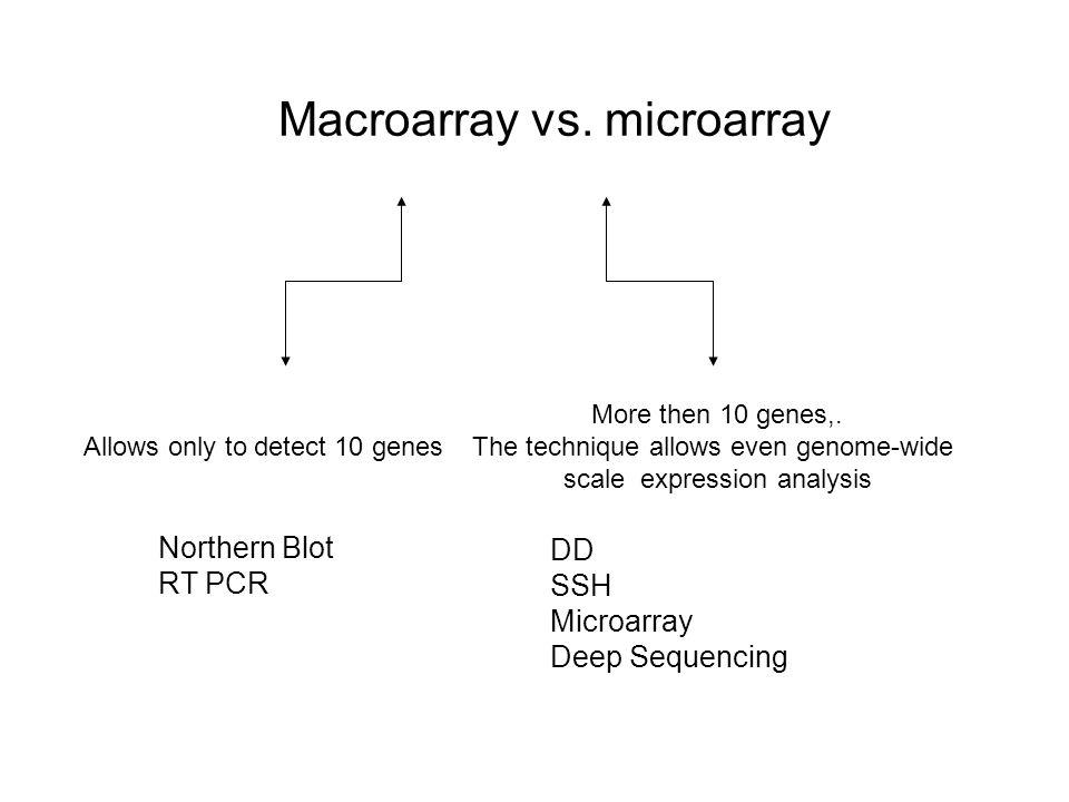 Coding region 5' UTR3' UTR UCG AAAAAAA n PCR Amplify Run on denaturing Polyacrylamide gel cDNA(s) Arbitrary Primers (80) Anchor Primer (3) labeled dNTPs X Y Z