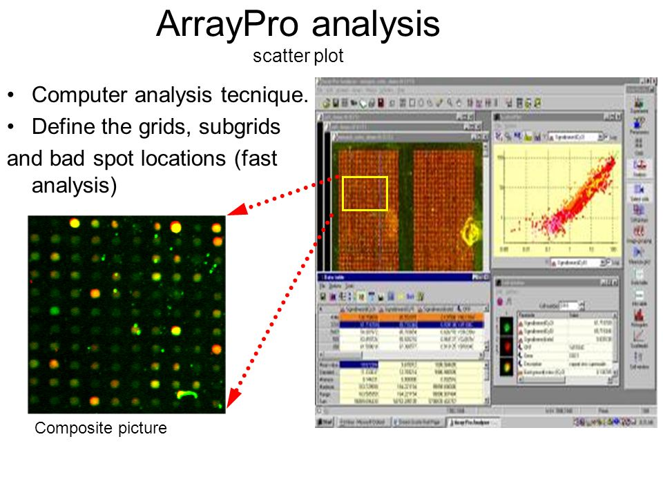 MicroPrep MAIN FEATURES LOWESS normalization Merging of DNA microarray data from changing slide versions Outlier detection Slide qualility assessment Slide based steps –PrePreP identify the bad spots ( ignored or bad cells) –PreP normalization (only the control and target signals need to be identified) Experiment step –PostPreP modified analyses