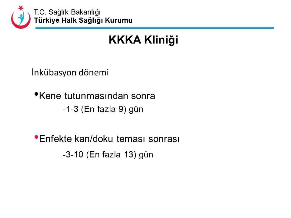 T.C. Sağlık Bakanlığı Türkiye Halk Sağlığı Kurumu T.C. Sağlık Bakanlığı Türkiye Halk Sağlığı Kurumu KKKA Kliniği Kene tutunmasından sonra -1-3 (En faz
