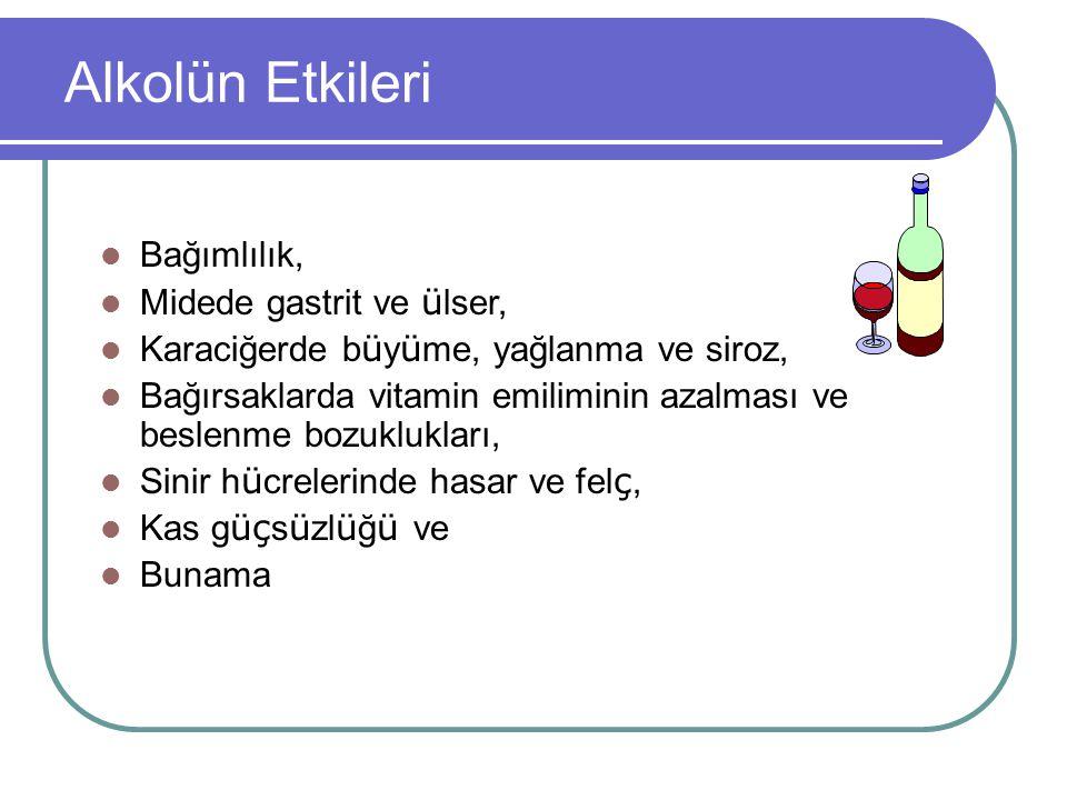 Alkolün Etkileri Bağımlılık, Midede gastrit ve ü lser, Karaciğerde b ü y ü me, yağlanma ve siroz, Bağırsaklarda vitamin emiliminin azalması ve beslenm