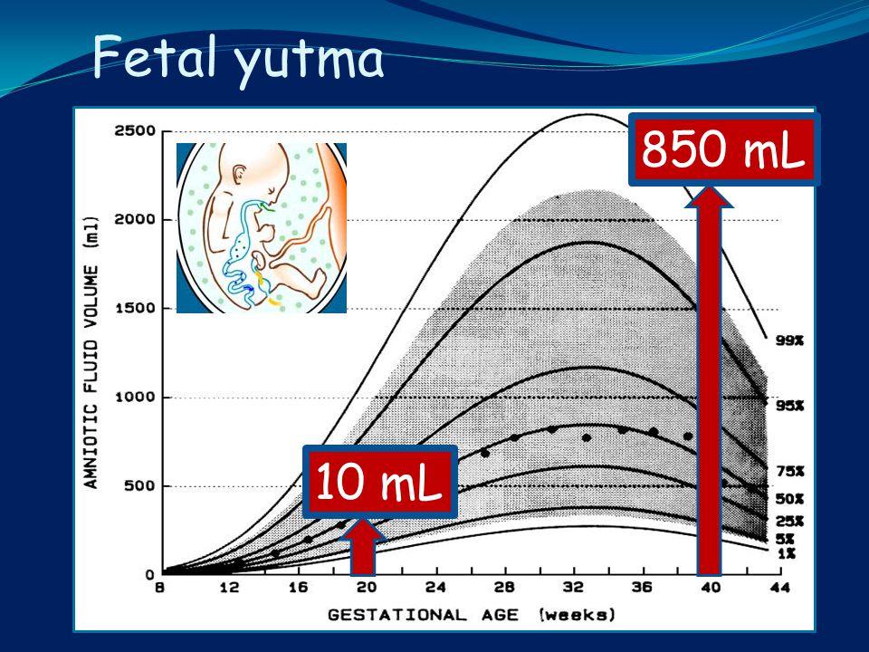 Fetal yutma 10 mL 850 mL