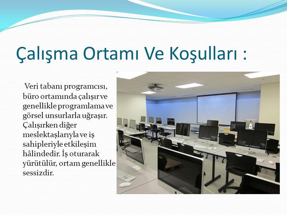 Çalışma Ortamı Ve Koşulları : Veri tabanı programcısı, büro ortamında çalışır ve genellikle programlama ve görsel unsurlarla uğraşır. Çalışırken diğer