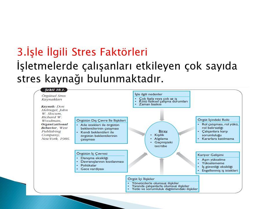 3.İşle İlgili Stres Faktörleri İşletmelerde çalışanları etkileyen çok sayıda stres kaynağı bulunmaktadır.