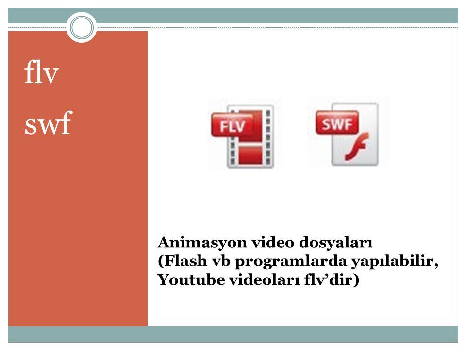 Animasyon video dosyaları (Flash vb programlarda yapılabilir, Youtube videoları flv'dir) flv swf