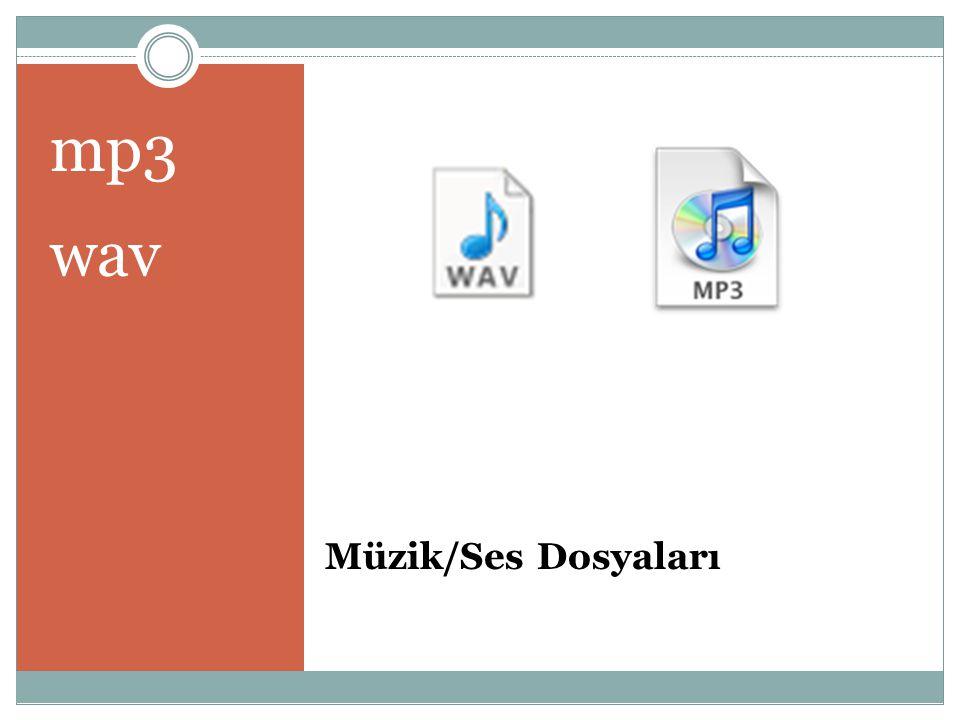 Müzik/Ses Dosyaları mp3 wav