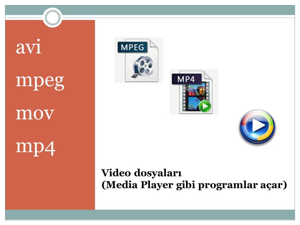 Video dosyaları (Media Player gibi programlar açar) avi mpeg mov mp4
