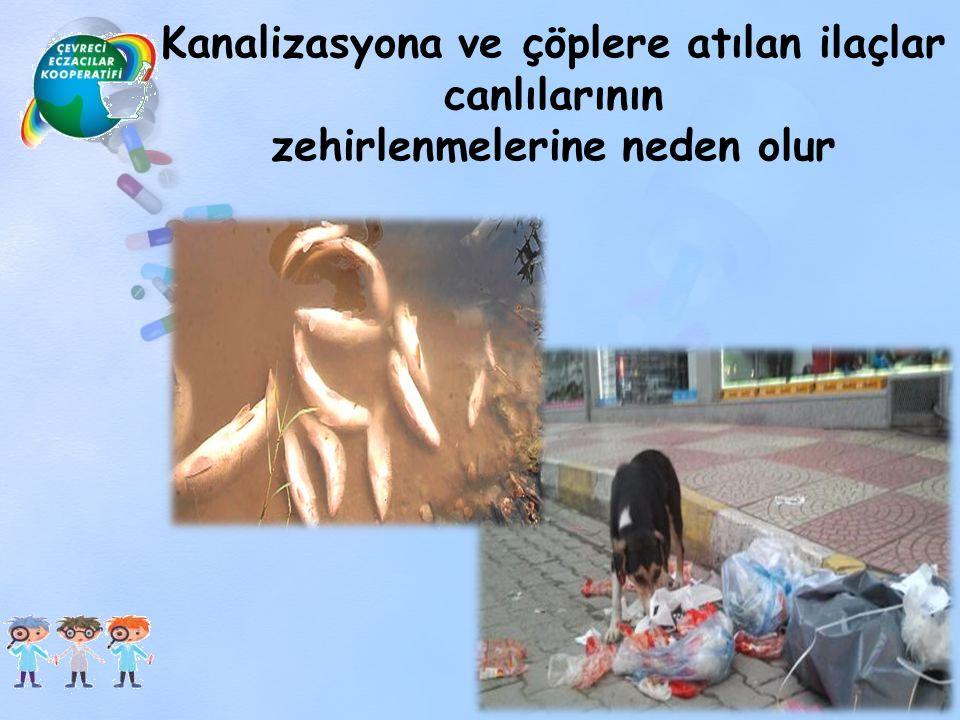 Kanalizasyona ve çöplere atılan ilaçlar canlılarının zehirlenmelerine neden olur