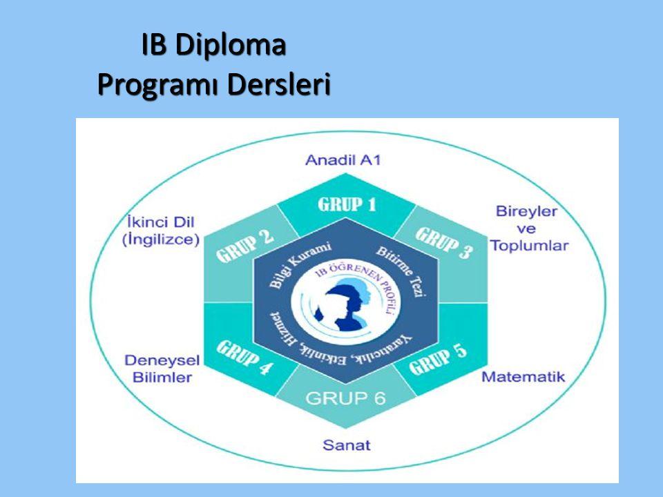 IB Diploma Programı Dersleri