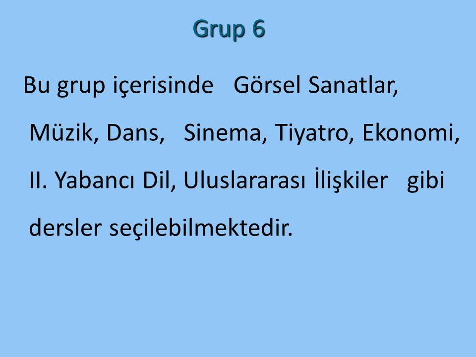 Grup 6 Bu grup içerisinde Görsel Sanatlar, Müzik, Dans, Sinema, Tiyatro, Ekonomi, II. Yabancı Dil, Uluslararası İlişkiler gibi dersler seçilebilmekted