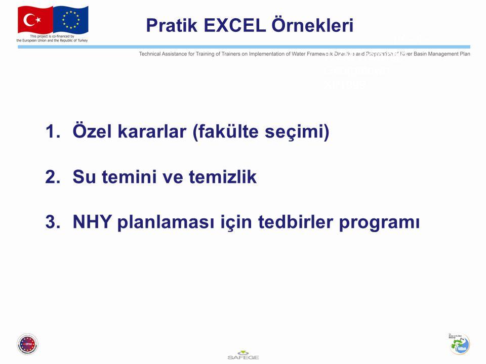 ICZM Training, Georgetown XI/1999 IV - 4 - 28 Pratik EXCEL Örnekleri 1.Özel kararlar (fakülte seçimi) 2.Su temini ve temizlik 3.NHY planlaması için tedbirler programı