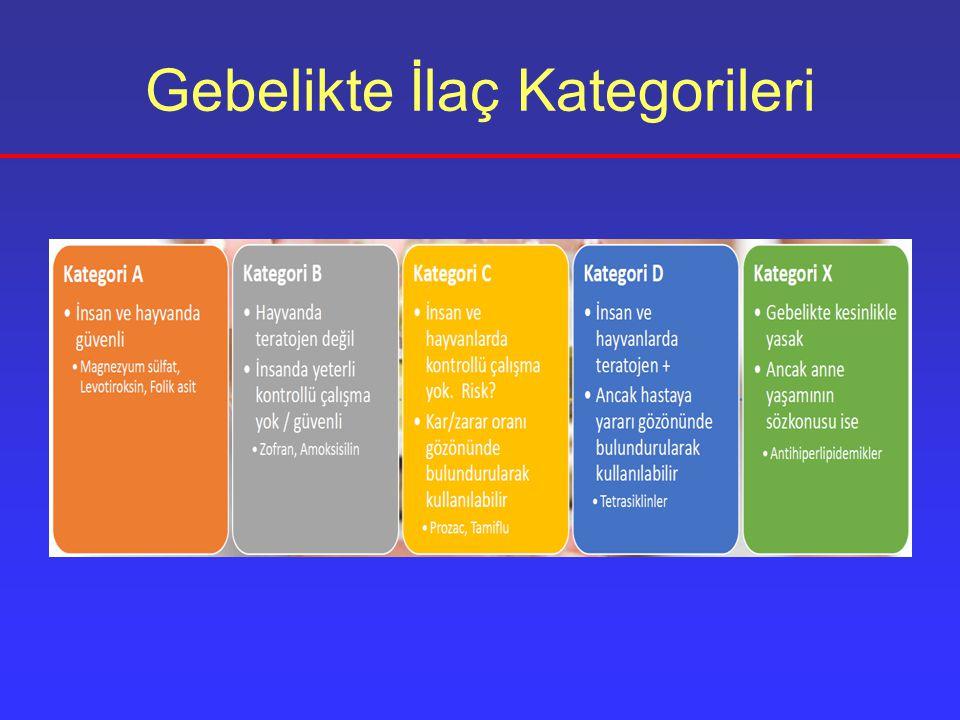 Gebelikte İlaç Kategorileri