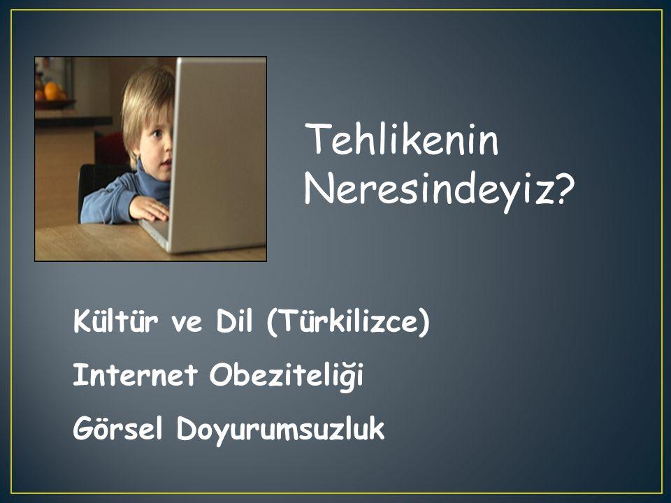 Tehlikenin Neresindeyiz? Kültür ve Dil (Türkilizce) Internet Obeziteliği Görsel Doyurumsuzluk