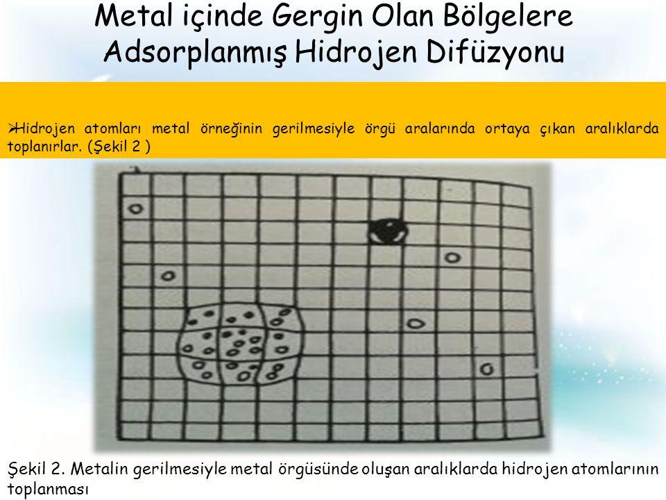 Metal içinde Gergin Olan Bölgelere Adsorplanmış Hidrojen Difüzyonu  Hidrojen atomları metal örneğinin gerilmesiyle örgü aralarında ortaya çıkan aralıklarda toplanırlar.