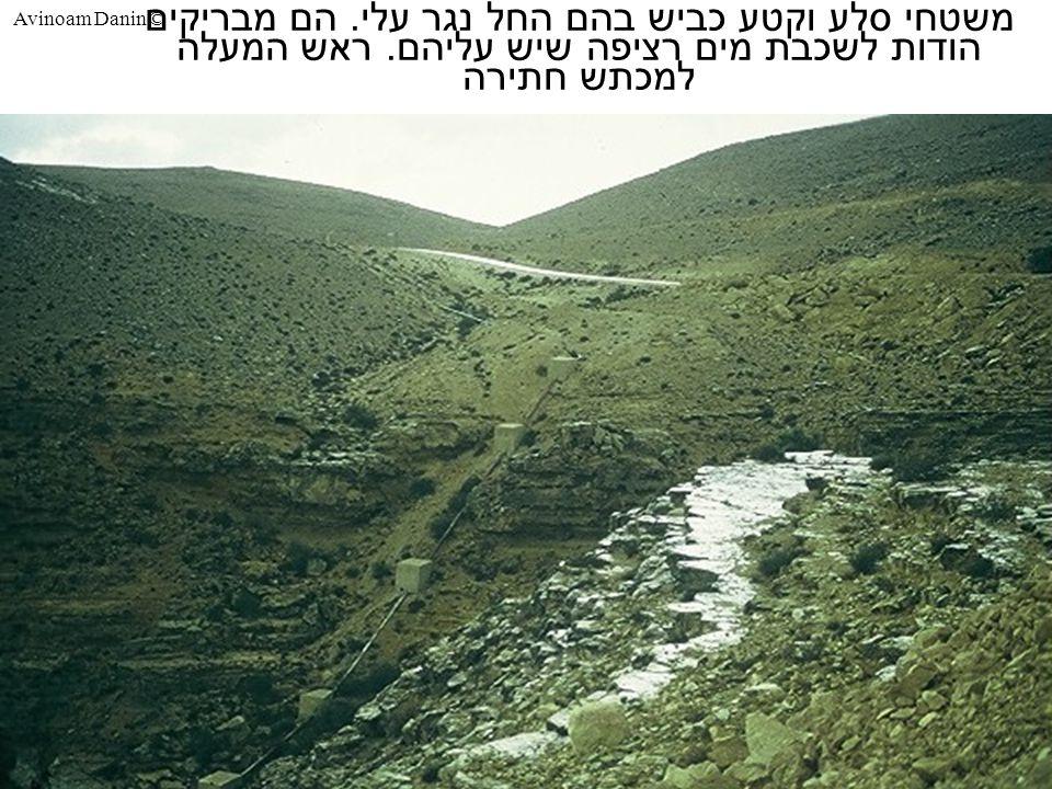 Avinoam Danin © משטחי סלע וקטע כביש בהם החל נגר עלי.