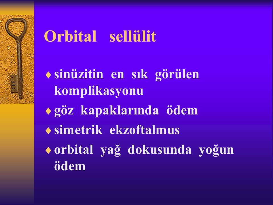 Orbital sellülit  sinüzitin en sık görülen komplikasyonu  göz kapaklarında ödem  simetrik ekzoftalmus  orbital yağ dokusunda yoğun ödem