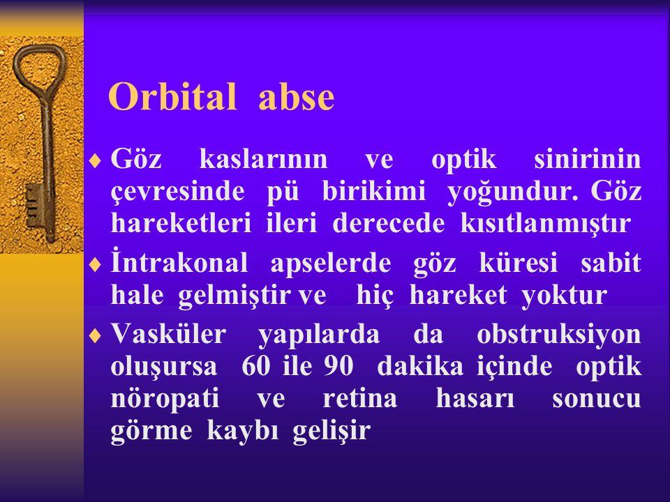 Orbital abse  Göz kaslarının ve optik sinirinin çevresinde pü birikimi yoğundur. Göz hareketleri ileri derecede kısıtlanmıştır  İntrakonal apselerde