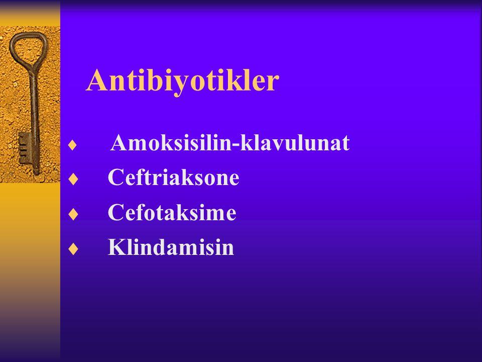 Antibiyotikler  Amoksisilin-klavulunat  Ceftriaksone  Cefotaksime  Klindamisin