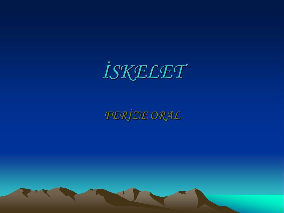 İSKELET FERİZE ORAL